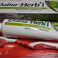 Аюрведическая зубная паста Ним с щеткой в подарок Dabur Herbal Toothpaste Neem, 150 мл+зубная щетка