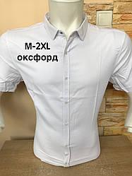 Біла сорочка з коротким рукавом Black Stone/оксфорд