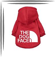 Толстовка для собак з капюшоном