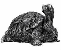 """Форма для садовой фигуры """"Черепаха"""""""
