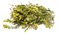 Мелколепестник канадский трава 100 грамм (ЗАТКНИ ГУЗНО)