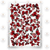 Печать съедобного фото - Бабочки №6