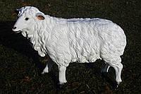 Овца новая 39см*56см
