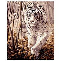 Картина за номерами «Білий тигр» VA-0238, 40 - 50 см