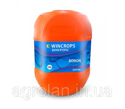 Вінкропс Бор