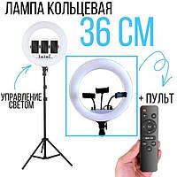 Светодиодная кольцевая лампа кольцо для селфи фото с держателем для телефона RL-14 36 см(LED/Лед свет, Selfie)