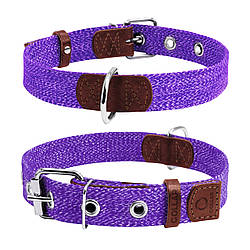 Ошейник для собак CoLLaR х/б тесьма, фиолетовый