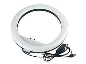 Світлодіодна кільцева лампа Ring Fill Light RL 12/QX300 30 см для професійного освітлення