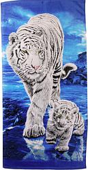 Пляжное полотенце Тигры/Львы/Леопарды (велюр) 70х140.