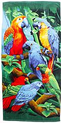 Пляжное полотенце Волки/Панда/Попугаи (велюр) 70х140.