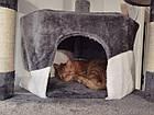 Кігтєточка, будиночок, дряпка для кішок 200см бежево біла, фото 10