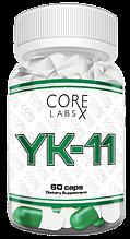 YK-11 CORE LABS