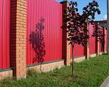 Профнастил (профлист) 10-ти волновой 1700х950 мм темная вишня, фото 4