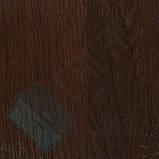 Двері Саган Класик м,v001, фото 2