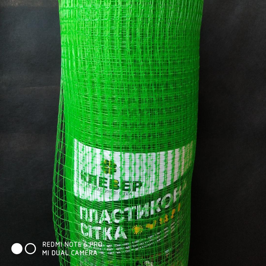 Сетка вольерная для птиц зеленая, ячейка 22мм x 35мм, рулон 0.5м x 100м