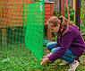 Сітка вольерная для птахів зелена 12х14мм рулон 1м x 50м, фото 8