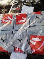 Мужские носки качественные