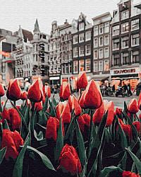 Картина по номерам Brushme Тюльпаны Амстердама (PGX34169) 40 х 50 см