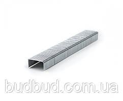 Скоби для степлера розжарені 6*0,7*11,3мм А53 (24-007) POLAX
