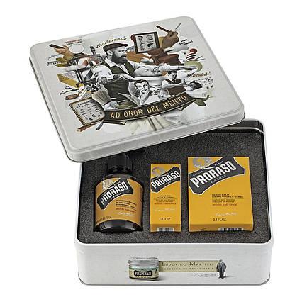 Мужской подарочный набор по уходу за бородой Proraso Beard Kit Wood & Spice