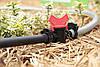 Кільце затискне Presto-PS для трубки 25 мм, в упаковці - 50 шт (SR-0125), фото 5