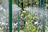 Крапельниця для поливу Presto-PS микроджет Туман, в упаковці - 10 шт. (MJ-1302), фото 10