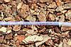 Шланг пвх пищевой Presto-PS Сrystal Tube диаметр 5 мм, длина 100 м (PVH 5 PS), фото 4