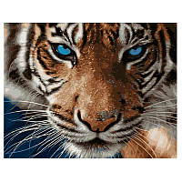 Картина за номерами «Блакитноокий тигр» VA- 1735, 40 - 50 см