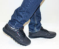 Мужские кроссовки Reebok Classic кожа