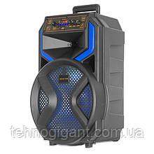 Портативная аккумуляторная колонка со светомузыкой Ailiang KOLAV-120E акустическая система Bluetooth 12 дюймов
