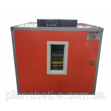 Профессиональный автоматический инкубатор Tehnomur MS-252/1008, фото 2