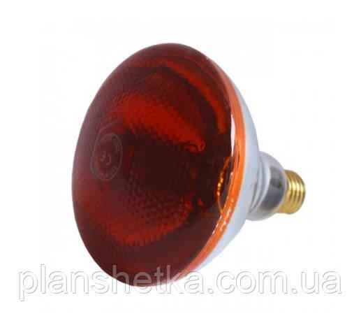 Лампа инфракрасная Tehnomur PAR38  цвет стекла оранжевый 150 Вт, фото 2