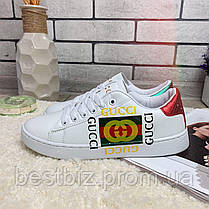 Кросівки Gucci 00010 ⏩ [ 37 останній розмір ], фото 3