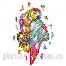 """Деревянный 3D конструктор """"Пазл Яркий Попугай"""", фото 3"""