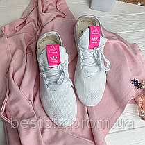 Кроссовки Adidas Pharrell Williams 30775 ⏩ [ 41> ], фото 2