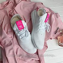 Кросівки Adidas Pharrell Williams 30775 ⏩ [ 41> ], фото 3