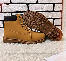 Зимові черевики (на хутрі) Timberland 11-042 ⏩ [ 36,38 ], фото 3