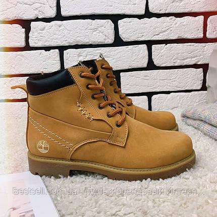 Зимние ботинки  (на меху) Timberland  13047 ⏩ [ 36,37,38,39 ], фото 2