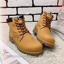 Зимние ботинки  (на меху) Timberland  13047 ⏩ [ 36,37,38,39 ], фото 3