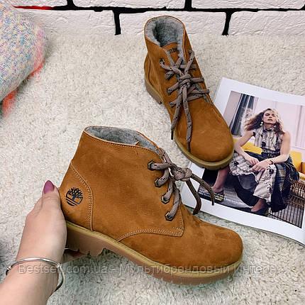 Зимние ботинки  (на меху) Timberland   [38 последний размер], фото 2