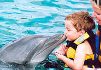 Дельфинотерапия на о.Бали, Индонезия