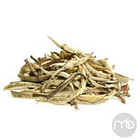 Белый элитный чай  Золотые иглы 50 г, фото 3