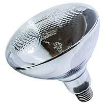 Лампа інфрачервона BR38 175 Вт білий. LO