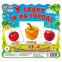 """Дитячі розвиваючі картки """"У саду і на городі"""" 13107003, 17 карток"""