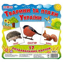 """Дитячі розвиваючі картки """"Тварини та птахи України"""" 13107008, 17 карток в наборі"""