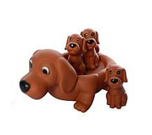 Детская игрушка для купания 6286 с пищалкой (Собачка)