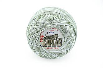 Kaplan, №424