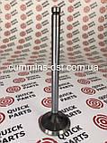 Клапан впускной Cummins B4.5/4B3.9/4ISBE 4ISBE-QSB/6BT5.9/6ISB-QSB, фото 2
