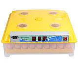 Інкубатор автоматичний Tehnomur, MS-98 + інвертор, фото 4