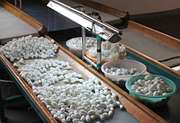 Как производят шелковую пряжу? Что такое буретный шелк?